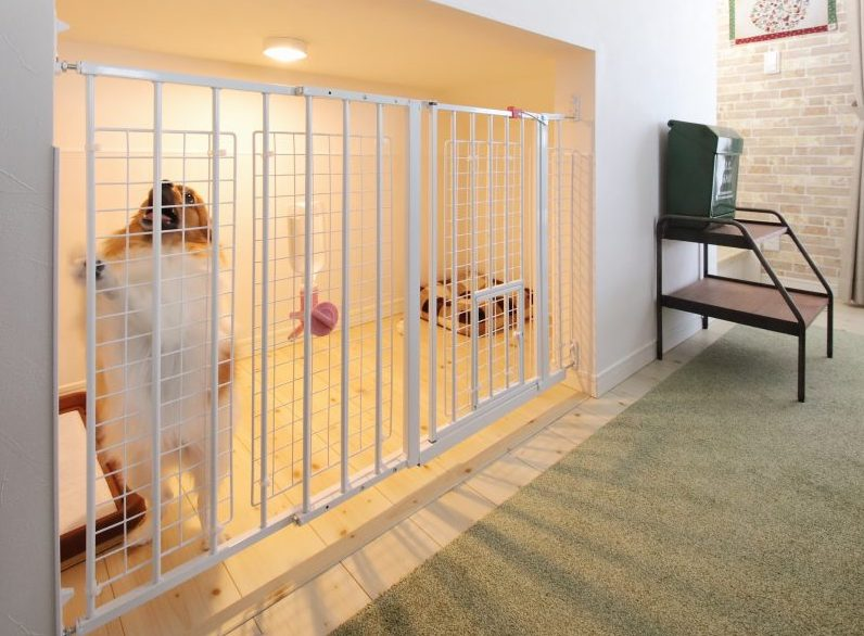 階段下のドッグスペースとワンちゃん